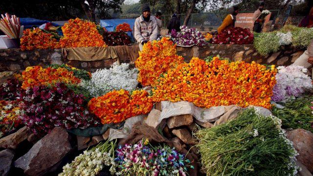 Delhi-flower-market