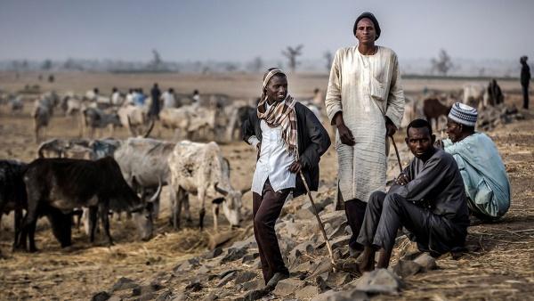 Nigeria-Herders-Adamawa